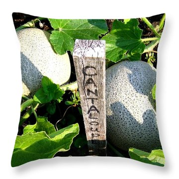 Cantaloupe Throw Pillow by Will Borden