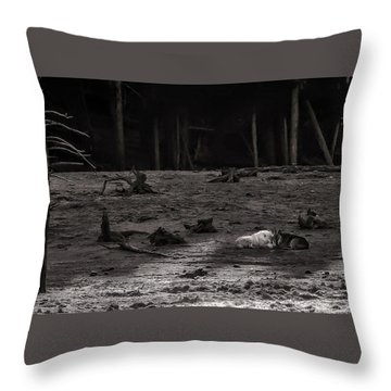 Canyon Alpha Love Story Unsigned Throw Pillow