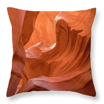 Canyon Beauty  Throw Pillow
