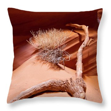 Canyon Branch Throw Pillow
