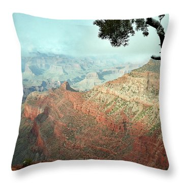 Canyon Captivation Throw Pillow