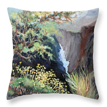 Canyon Land Throw Pillow