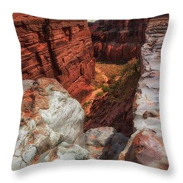 Canyon Lands Quartz Falls Overlook Throw Pillow by Gary Warnimont