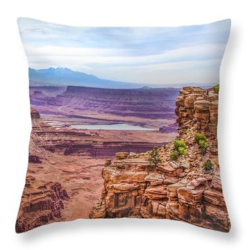 Canyon Landscape Throw Pillow