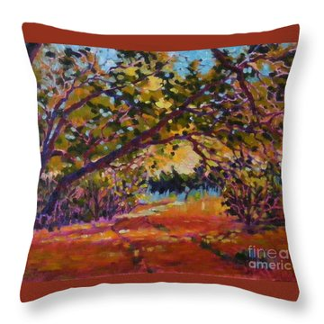 Canyon Light Throw Pillow
