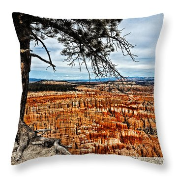 Canyon Overlook Throw Pillow by Christopher Holmes