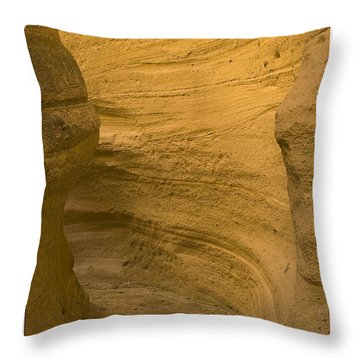 Canyon Path Throw Pillow