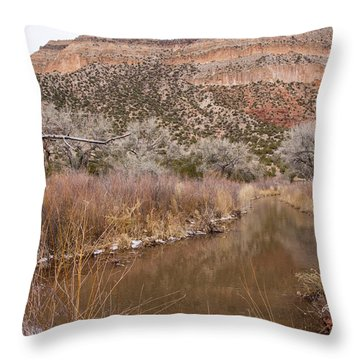 Canyon River Throw Pillow