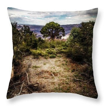 Canyon Sentinel Throw Pillow