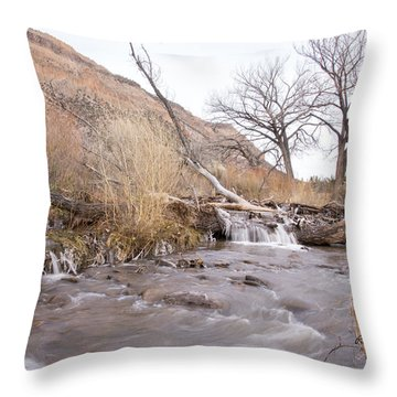 Canyon Stream Current Throw Pillow