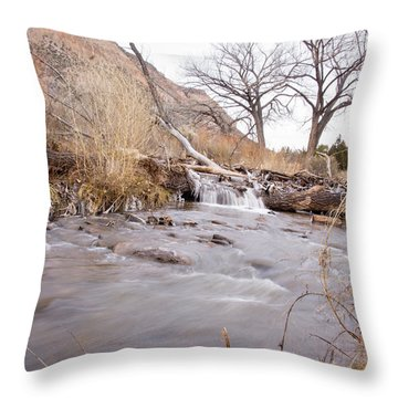 Canyon Stream Falls Throw Pillow