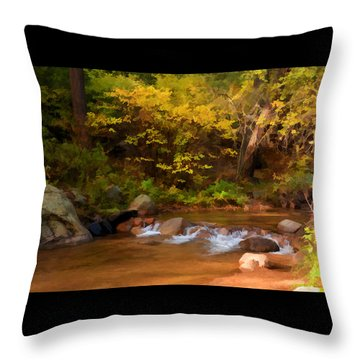 Canyon Stream In Autumn Throw Pillow