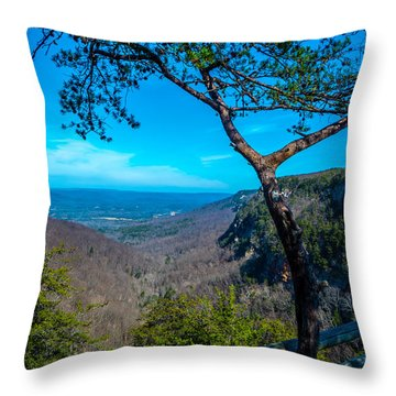 Canyon View Throw Pillow