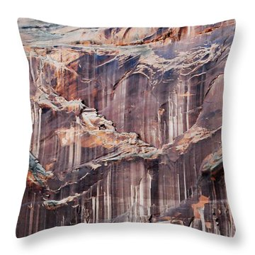 Canyon Wall Tapestry Throw Pillow by Geraldine Alexander