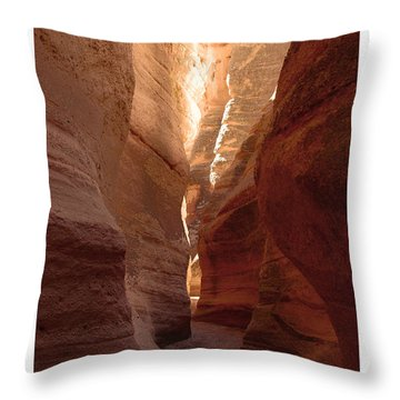 Canyon Wall Throw Pillow