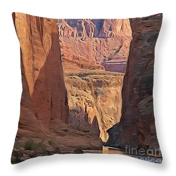Canyon Walls Throw Pillow by Walter Colvin