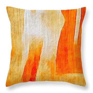Canyon Throw Pillow by William Wyckoff