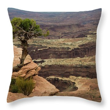 Throw Pillow featuring the photograph Canyonlands by Gary Lengyel