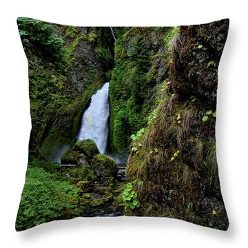 Canyon's End Throw Pillow