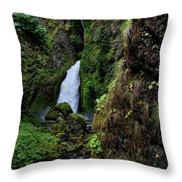 Canyon's End Throw Pillow