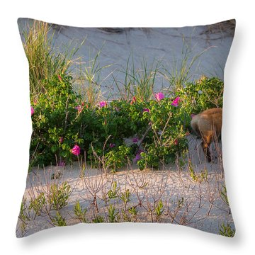 Throw Pillow featuring the photograph Cape Cod Beach Fox by Bill Wakeley