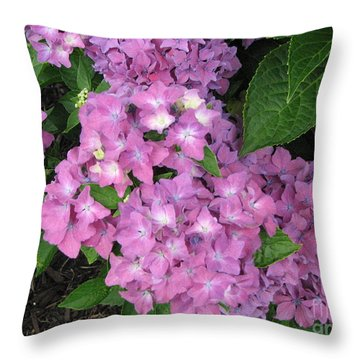 Cape Cod Hydrangeas Throw Pillow