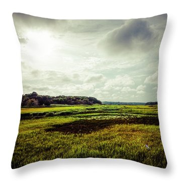 Cape Cod Marsh 1 Throw Pillow
