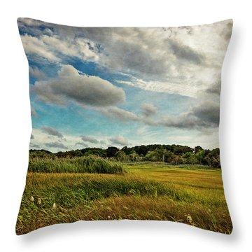 Cape Cod Marsh 2 Throw Pillow