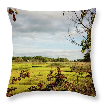 Cape Cod Marsh 3 Throw Pillow
