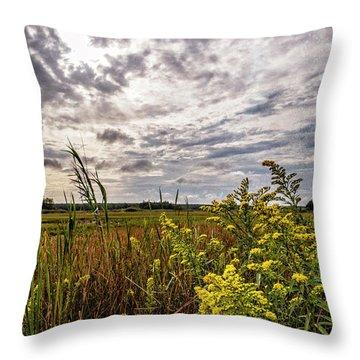 Cape Cod Marsh 4 Throw Pillow