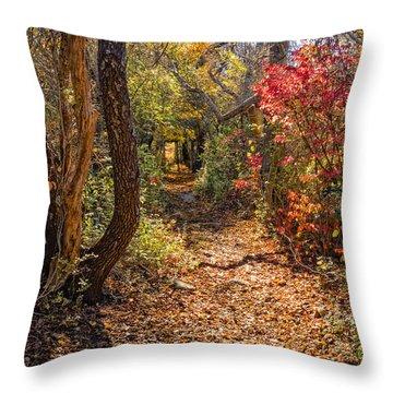 Cape Cod Path Throw Pillow