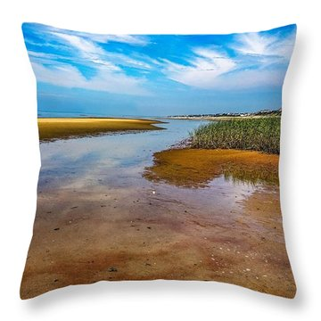 Cape Perspective Throw Pillow