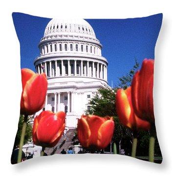 Capital Colors Throw Pillow