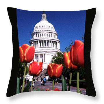 Capital Colors Throw Pillow