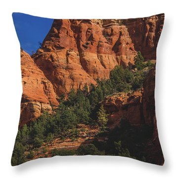 Capitol Butte Details Throw Pillow