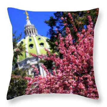 Capitol In Bloom Throw Pillow