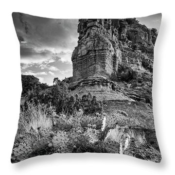 Throw Pillow featuring the photograph Caprock And Cactus by Stephen Stookey