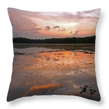 Throw Pillow featuring the photograph Captivating by Heather Kenward