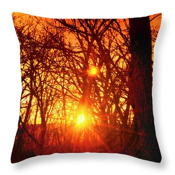 Captured By The Light Throw Pillow by Kat Besthorn