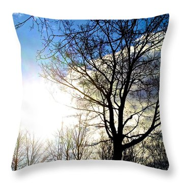 Capturing The Morning Sun Throw Pillow