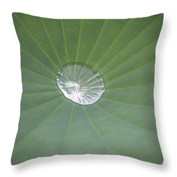 Capturing Water Throw Pillow by Linda Geiger