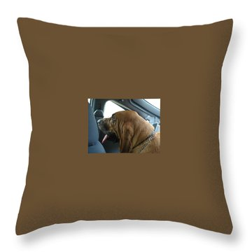 Car Ride Throw Pillow by Val Oconnor