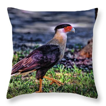Cara Cara Strut Throw Pillow