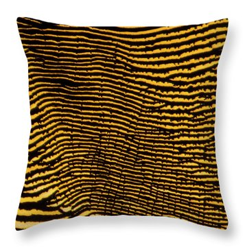 Interlaced Lines Throw Pillow