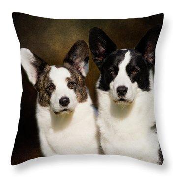 Cardigan Corgis Throw Pillow