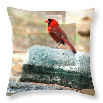 Throw Pillow featuring the photograph Cardinal by Donna Bentley