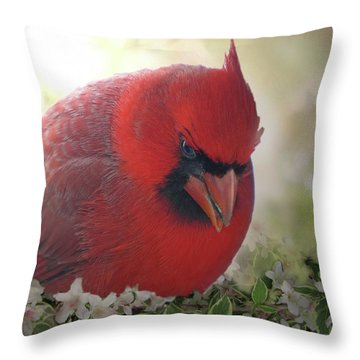 Throw Pillow featuring the photograph Cardinal In Flowers by Debbie Portwood
