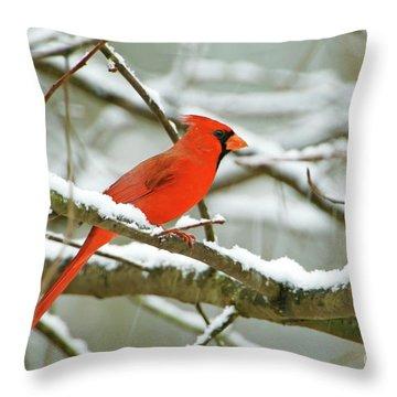 Cardinal In Snow Throw Pillow