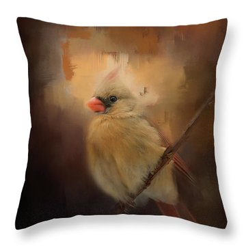 Cardinal In The Evening Light Bird Art Throw Pillow