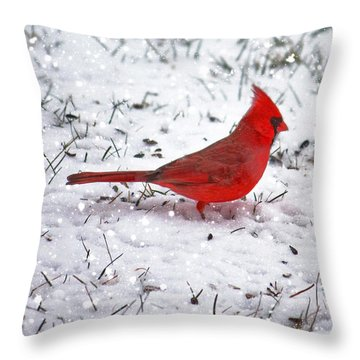 Cardinal In The Snow Throw Pillow by Suzanne Stout